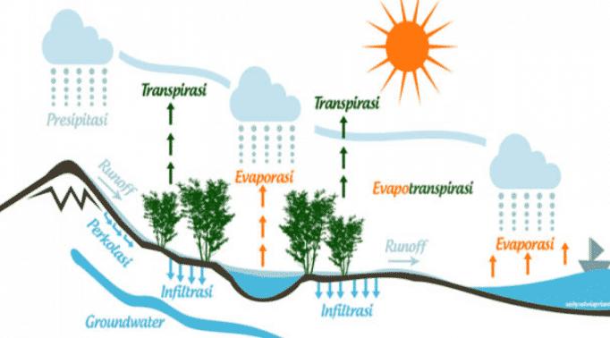 Komponen hidrologi