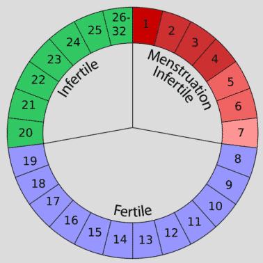 Tabel Menstruasi