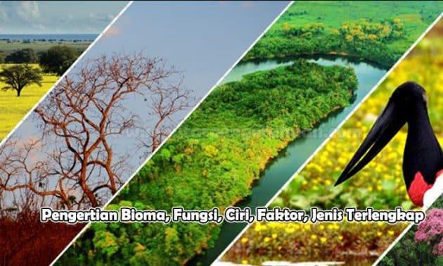 Pengertian Bioma - Jenis, Fungsi, Faktor, Ciri-cirinya